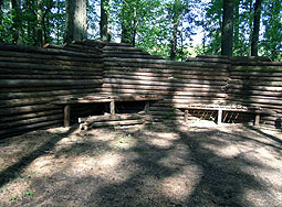 Log castle at chemawa paintball field Salem, OR